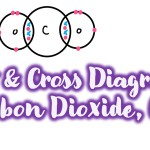 dot and cross diagram of carbon dioxide